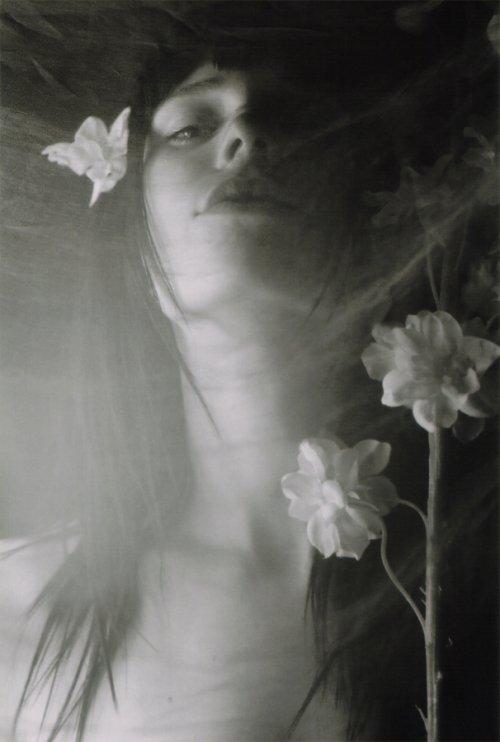 floraelev1.jpg